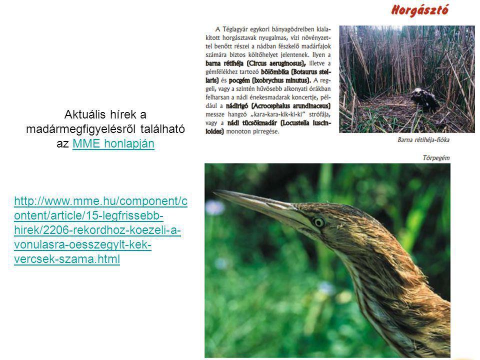 Aktuális hírek a madármegfigyelésről található az MME honlapjánMME honlapján http://www.mme.hu/component/c ontent/article/15-legfrissebb- hirek/2206-rekordhoz-koezeli-a- vonulasra-oesszegylt-kek- vercsek-szama.html