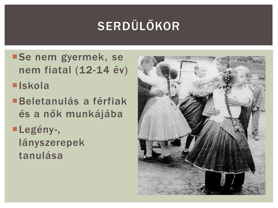 """ Legény (16-18 évtől), azelőtt """"suttyó , """"puhab volt a neve  Legénycéh – legényavatás  Legfontosabb szempont a munkabírás  Keresztapát választott, aki fölavatta  Jogai: fonóba, kocsmába, lányokhoz járhatott, táncba, mulatságba lányt hívhatott… IFJÚKOR"""