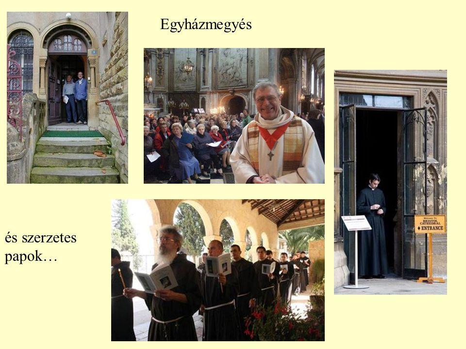 Ez az év alkalmas, hogy a papokról elmélkedjünk, hisz 150 éve halt meg Vienne-i Szent János, aki a világ összes papjainak védőszentje.