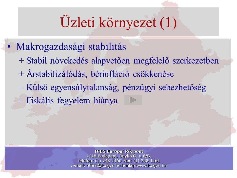 Üzleti környezet (1) •Makrogazdasági stabilitás + Stabil növekedés alapvetően megfelelő szerkezetben + Árstabilizálódás, bérinfláció csökkenése –Külső egyensúlytalanság, pénzügyi sebezhetőség –Fiskális fegyelem hiánya ICEG Európai Központ 1118 Budapest, Dayka G.