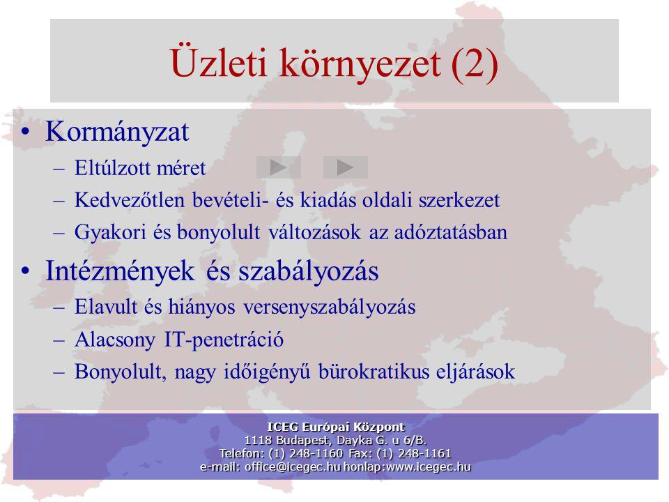 Üzleti környezet (2) •Kormányzat –Eltúlzott méret –Kedvezőtlen bevételi- és kiadás oldali szerkezet –Gyakori és bonyolult változások az adóztatásban •Intézmények és szabályozás –Elavult és hiányos versenyszabályozás –Alacsony IT-penetráció –Bonyolult, nagy időigényű bürokratikus eljárások ICEG Európai Központ 1118 Budapest, Dayka G.