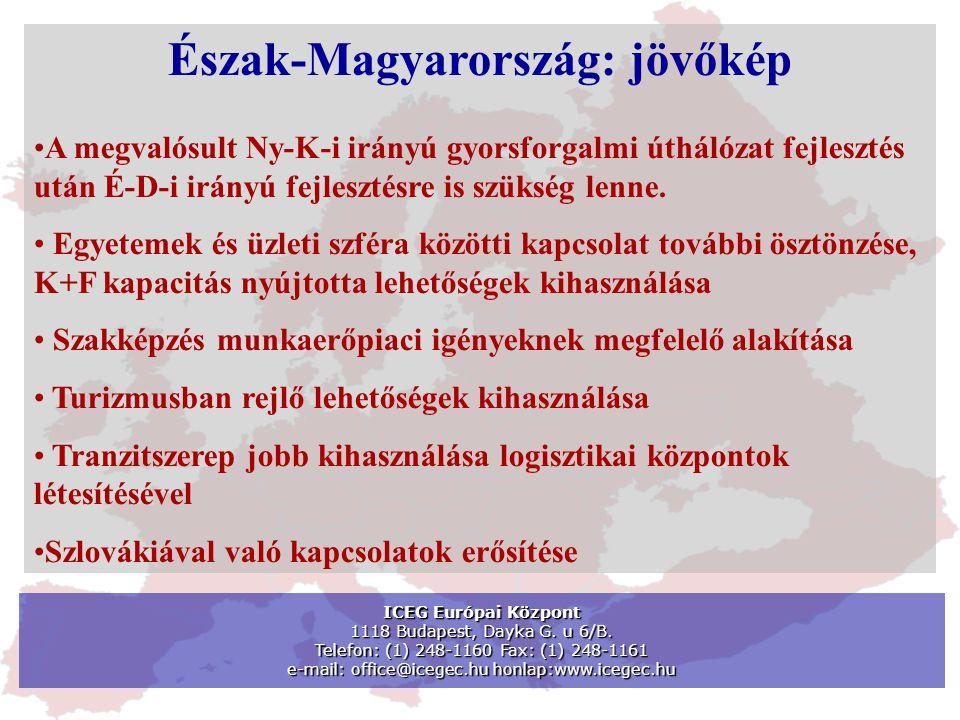 ICEG Európai Központ 1118 Budapest, Dayka G. u 6/B. Telefon: (1) 248-1160 Fax: (1) 248-1161 e-mail: office@icegec.hu honlap:www.icegec.hu Észak-Magyar