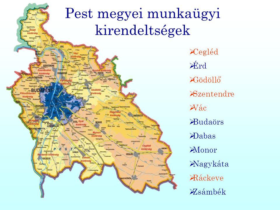 Pest megyei munkaügyi kirendeltségek  Cegléd  Érd  Gödöllő  Szentendre  Vác  Budaörs  Dabas  Monor  Nagykáta  Ráckeve  Zsámbék