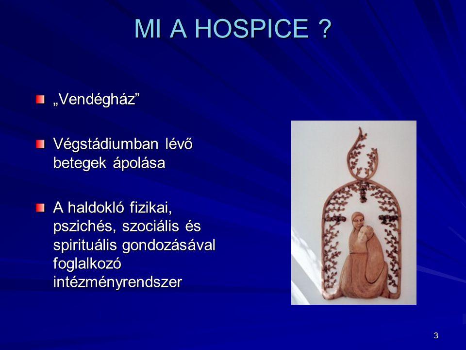 3 MI A HOSPICE .
