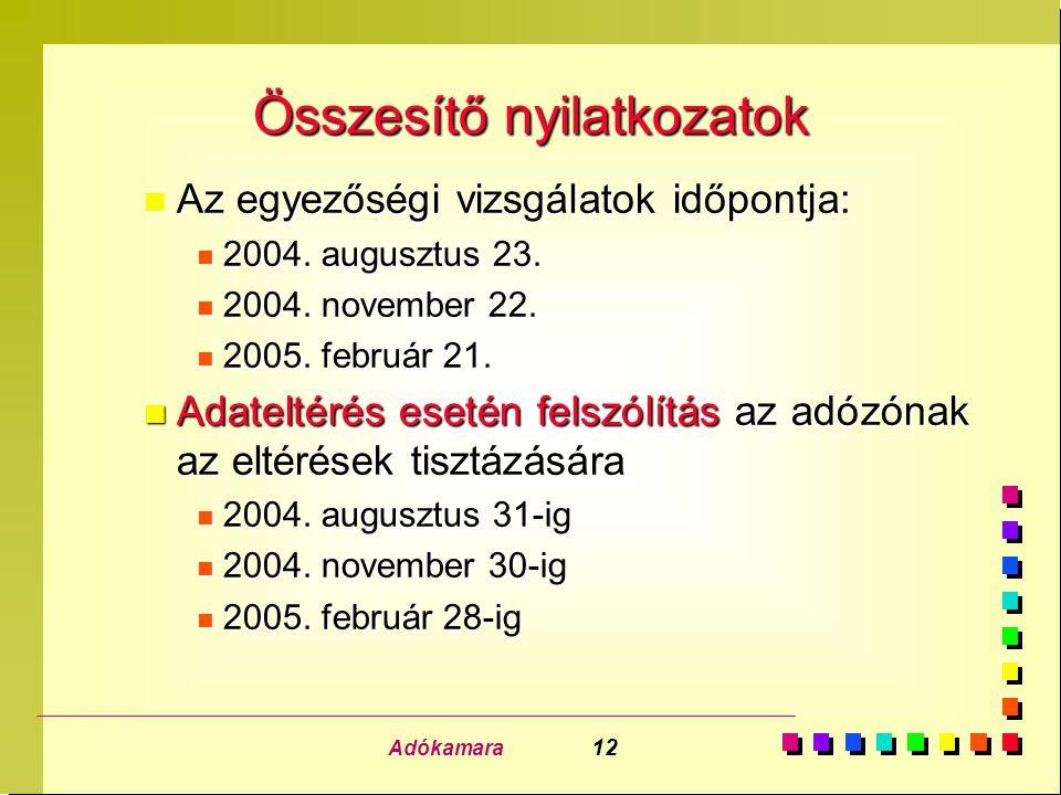 Adókamara 12 Összesítő nyilatkozatok n Az egyezőségi vizsgálatok időpontja: n 2004. augusztus 23. n 2004. november 22. n 2005. február 21. n Adateltér