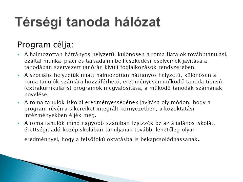 Program célja:  A halmozottan hátrányos helyzetű, különösen a roma fiatalok továbbtanulási, ezáltal munka-piaci és társadalmi beilleszkedési esélyein