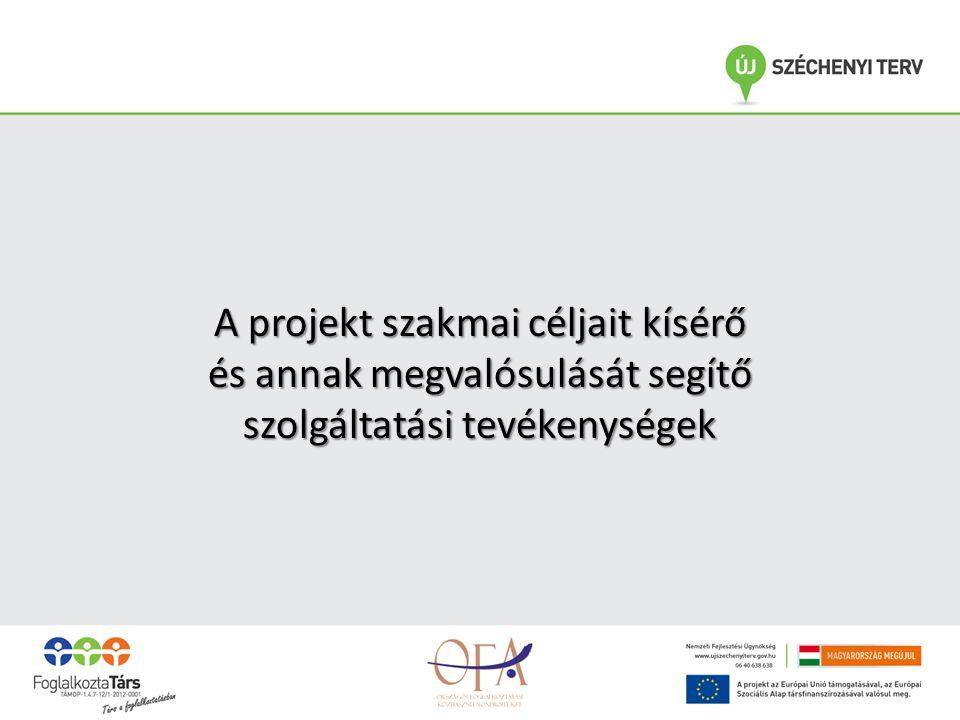A projekt szakmai céljait kísérő és annak megvalósulását segítő szolgáltatási tevékenységek