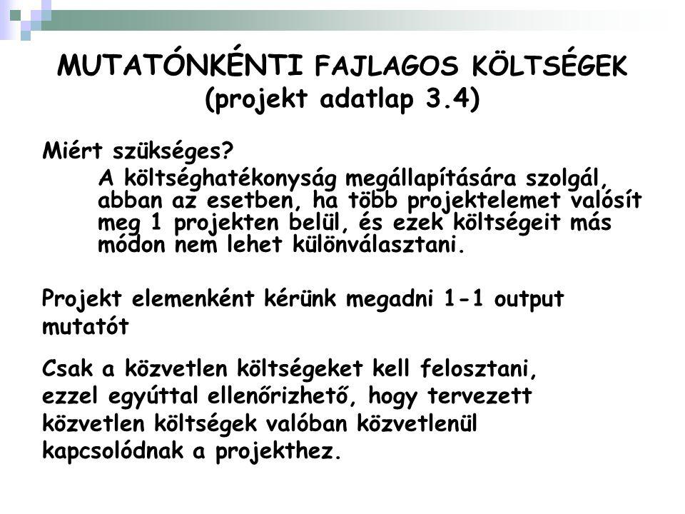 MUTATÓNKÉNTI FAJLAGOS KÖLTSÉGEK (projekt adatlap 3.4) Miért szükséges.