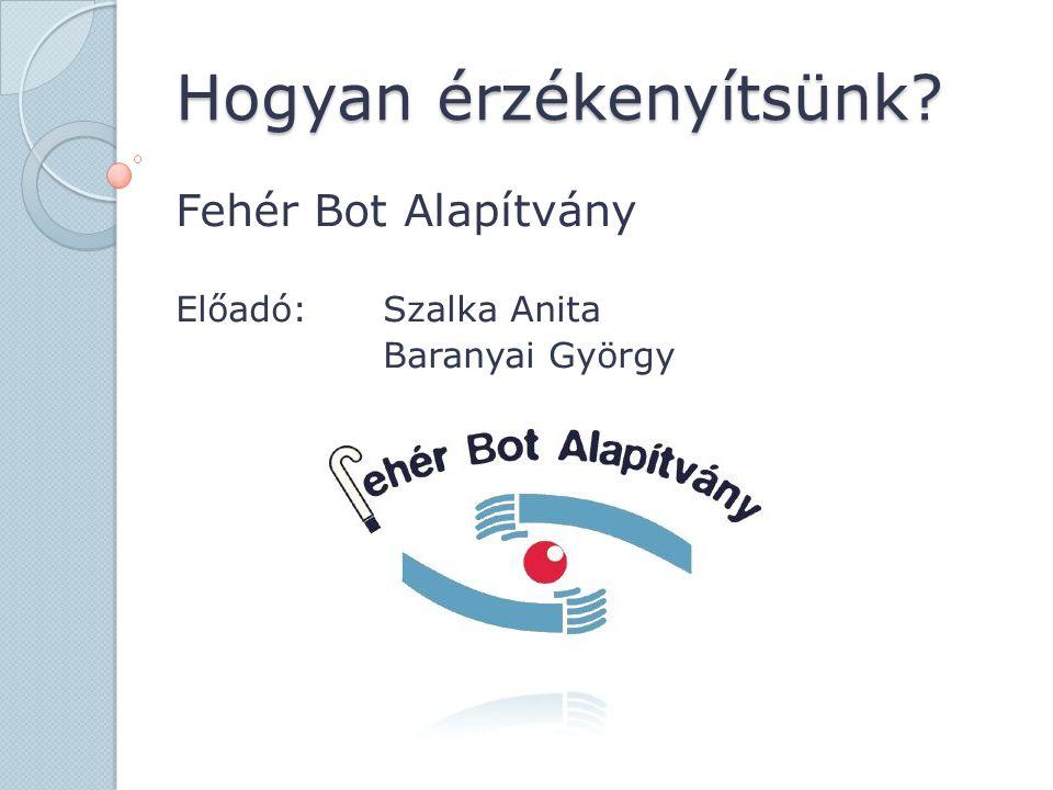Hogyan érzékenyítsünk? Fehér Bot Alapítvány Előadó:Szalka Anita Baranyai György