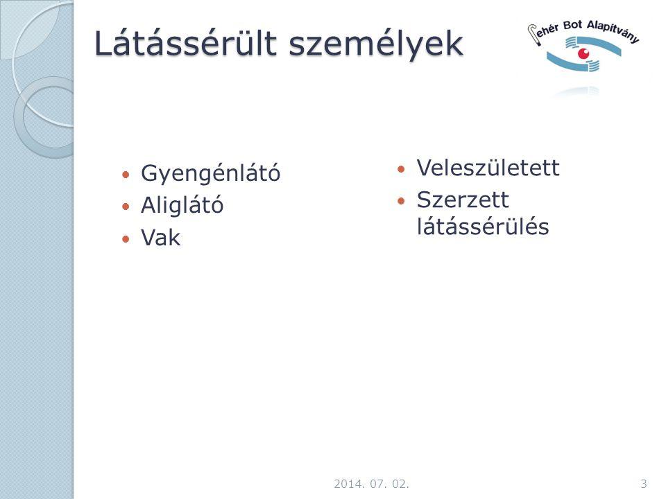 Látássérült személyek  Gyengénlátó  Aliglátó  Vak  Veleszületett  Szerzett látássérülés 2014.