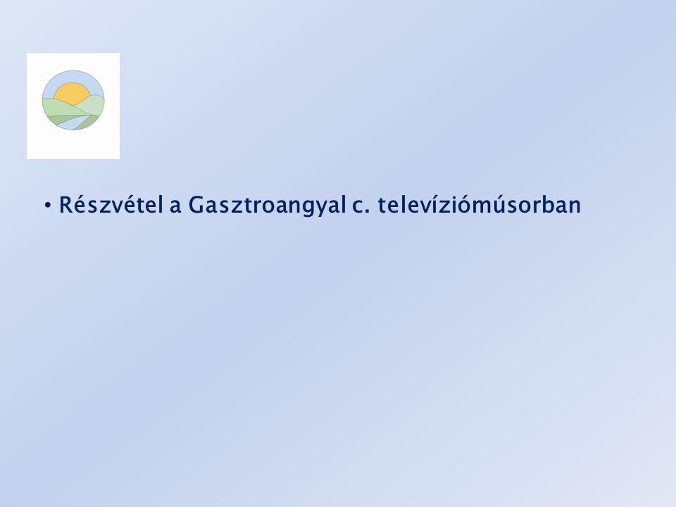 • Részvétel a Gasztroangyal c. televíziómúsorban