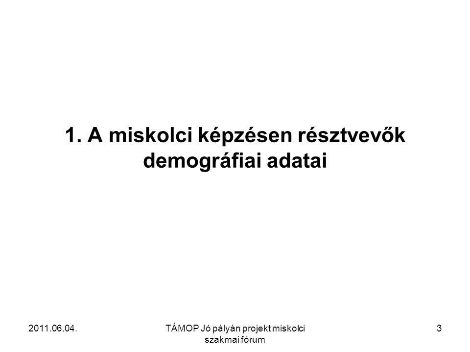 2011.06.04.TÁMOP Jó pályán projekt miskolci szakmai fórum 3 1.