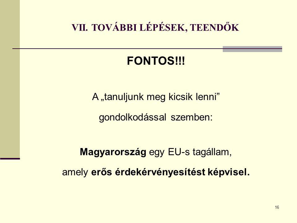 """VII. TOVÁBBI LÉPÉSEK, TEENDŐK FONTOS!!! A """"tanuljunk meg kicsik lenni"""" gondolkodással szemben: Magyarország egy EU-s tagállam, amely erős érdekérvénye"""
