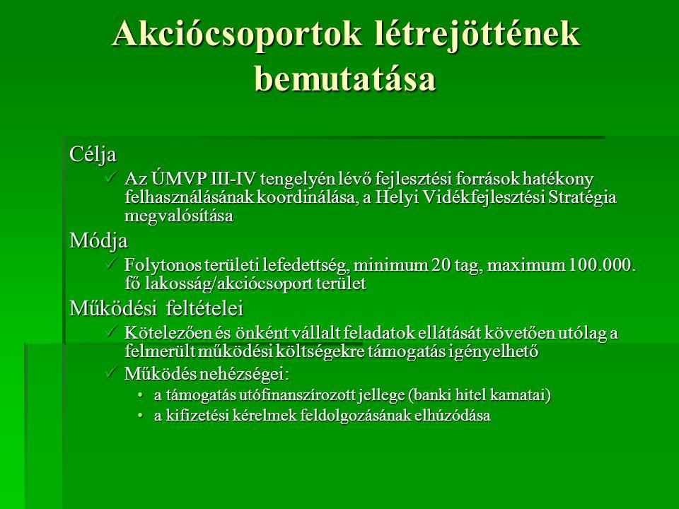 Akciócsoportok feladatai Kötelező:  HVS elkészítése  Tájékoztatás, tanácsadás, információ-szolgáltatás  Pályázatok előzetes pontozása  Honlap működtetése  Adatszolgáltatás A jövő: akkreditálást követően delegált feladatok ellátása (befogadástól-hiánypótlási eljáráson át a határozatok meghozataláig) Önként vállalt:  Térséget segítő tanulmányok készítése  Rendezvények szervezése, lebonyolítása