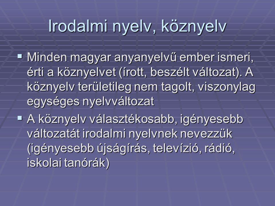 Irodalmi nyelv, köznyelv  Minden magyar anyanyelvű ember ismeri, érti a köznyelvet (írott, beszélt változat).