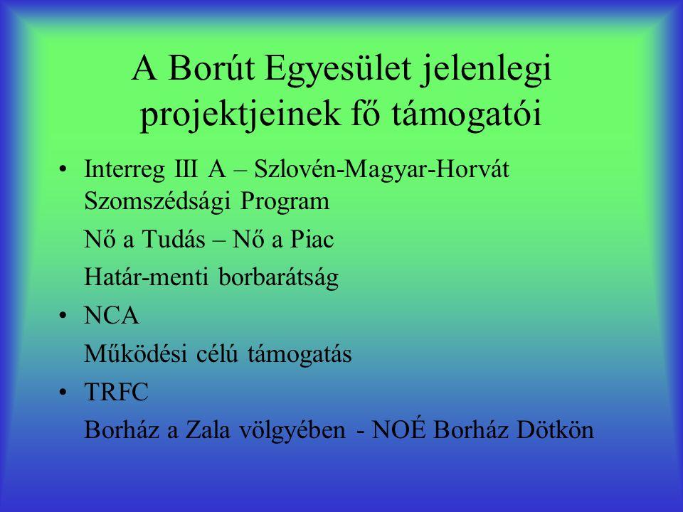 A Borút Egyesület jelenlegi projektjeinek fő támogatói •Interreg III A – Szlovén-Magyar-Horvát Szomszédsági Program Nő a Tudás – Nő a Piac Határ-menti borbarátság •NCA Működési célú támogatás •TRFC Borház a Zala völgyében - NOÉ Borház Dötkön