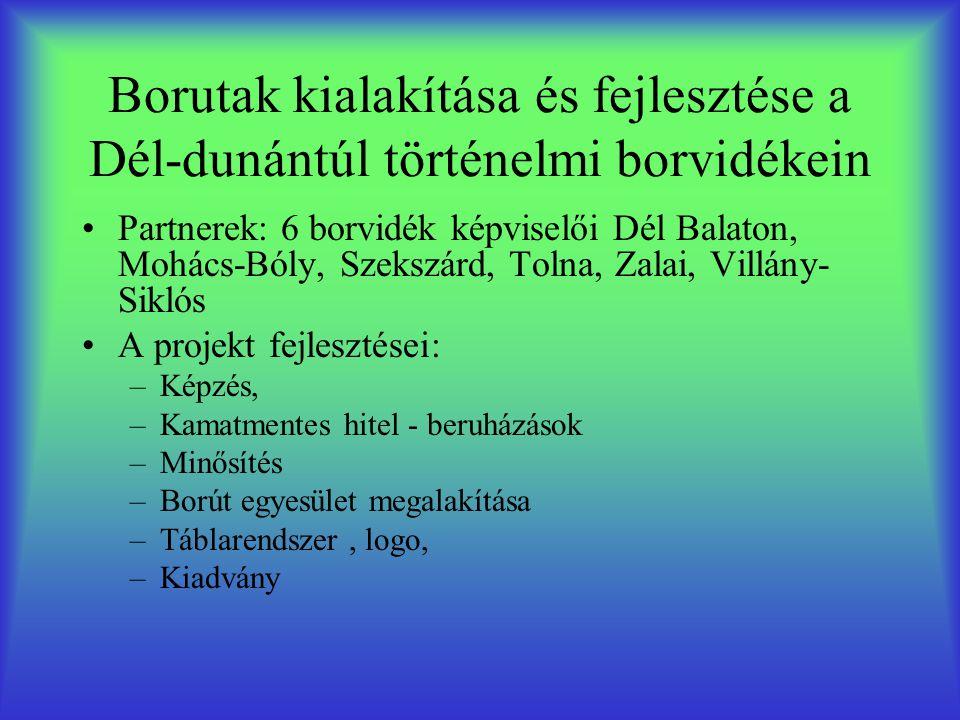 Borutak kialakítása és fejlesztése a Dél-dunántúl történelmi borvidékein •Partnerek: 6 borvidék képviselői Dél Balaton, Mohács-Bóly, Szekszárd, Tolna, Zalai, Villány- Siklós •A projekt fejlesztései: –Képzés, –Kamatmentes hitel - beruházások –Minősítés –Borút egyesület megalakítása –Táblarendszer, logo, –Kiadvány