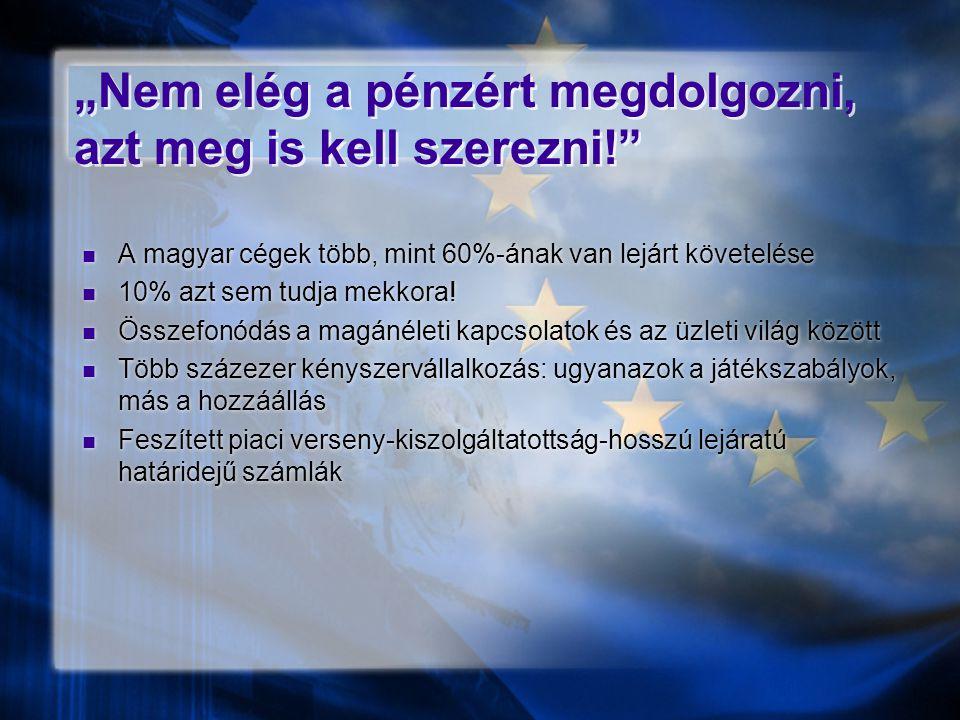 """""""Nem elég a pénzért megdolgozni, azt meg is kell szerezni!""""  A magyar cégek több, mint 60%-ának van lejárt követelése  10% azt sem tudja mekkora! """