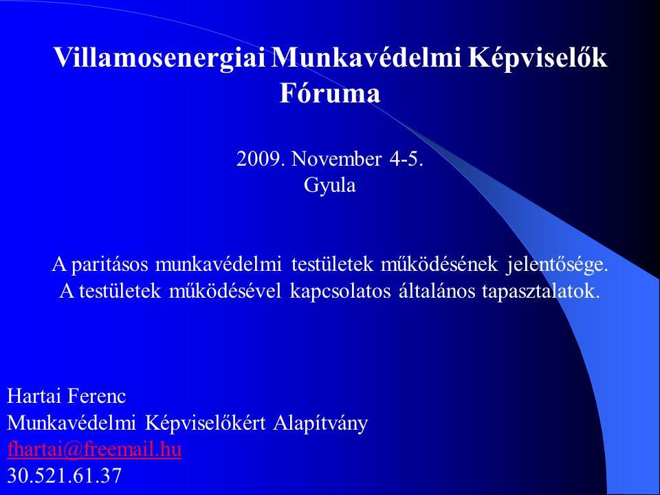 Villamosenergiai Munkavédelmi Képviselők Fóruma 2009. November 4-5. Gyula A paritásos munkavédelmi testületek működésének jelentősége. A testületek mű