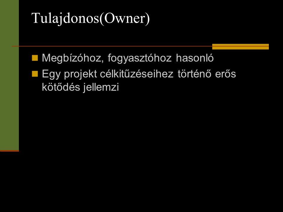Tulajdonos(Owner)  Megbízóhoz, fogyasztóhoz hasonló  Egy projekt célkitűzéseihez történő erős kötődés jellemzi