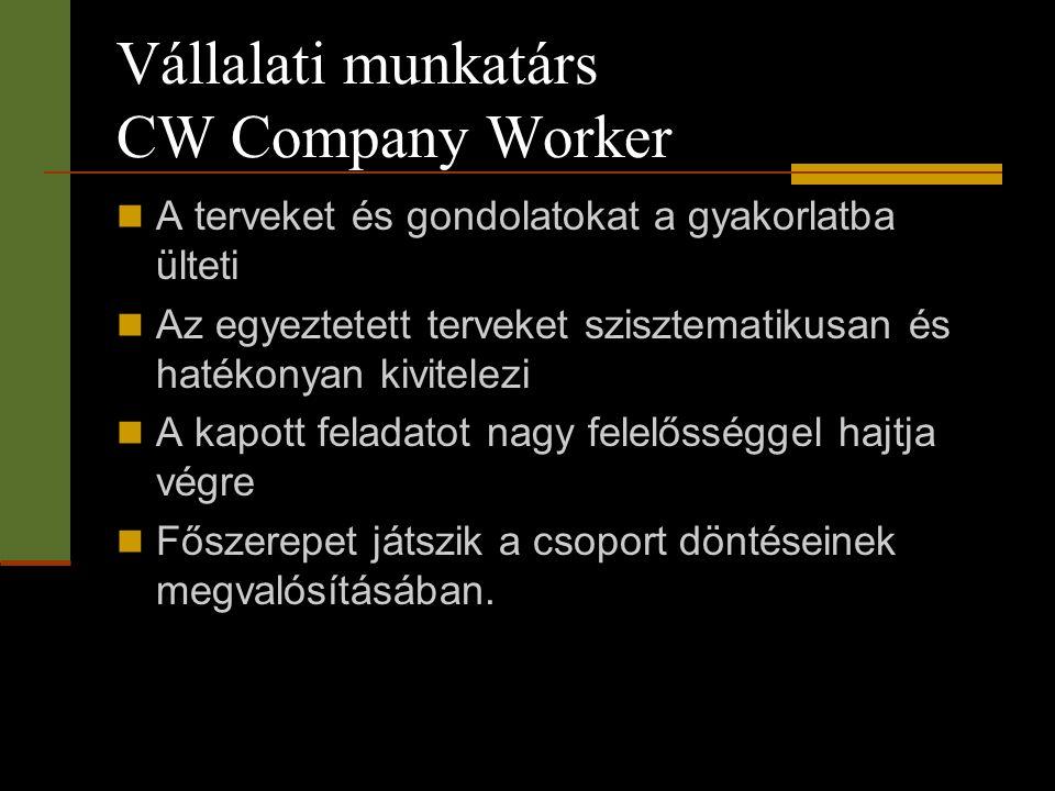 Vállalati munkatárs CW Company Worker  A terveket és gondolatokat a gyakorlatba ülteti  Az egyeztetett terveket szisztematikusan és hatékonyan kivit