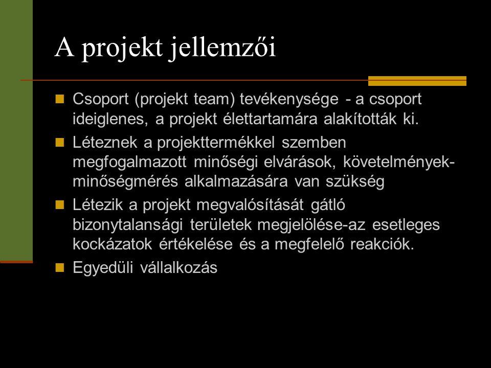 A projekt jellemzői  Csoport (projekt team) tevékenysége - a csoport ideiglenes, a projekt élettartamára alakították ki.  Léteznek a projekttermékke