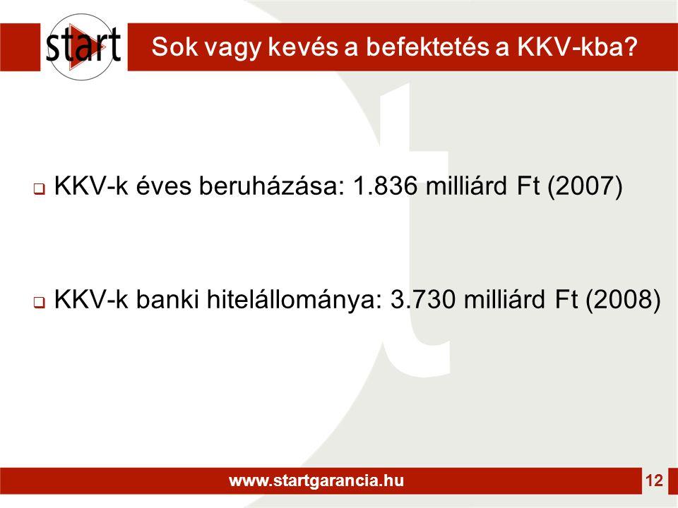 www.startgarancia.hu 12 Sok vagy kevés a befektetés a KKV-kba?  KKV-k éves beruházása: 1.836 milliárd Ft (2007)  KKV-k banki hitelállománya: 3.730 m