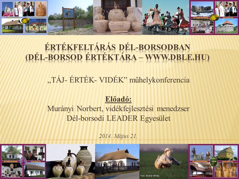 """""""TÁJ- ÉRTÉK- VIDÉK műhelykonferencia Előadó: Murányi Norbert, vidékfejlesztési menedzser Dél-borsodi LEADER Egyesület 2014."""