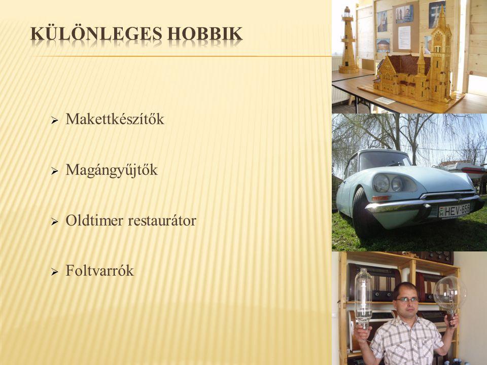  Makettkészítők  Magángyűjtők  Oldtimer restaurátor  Foltvarrók