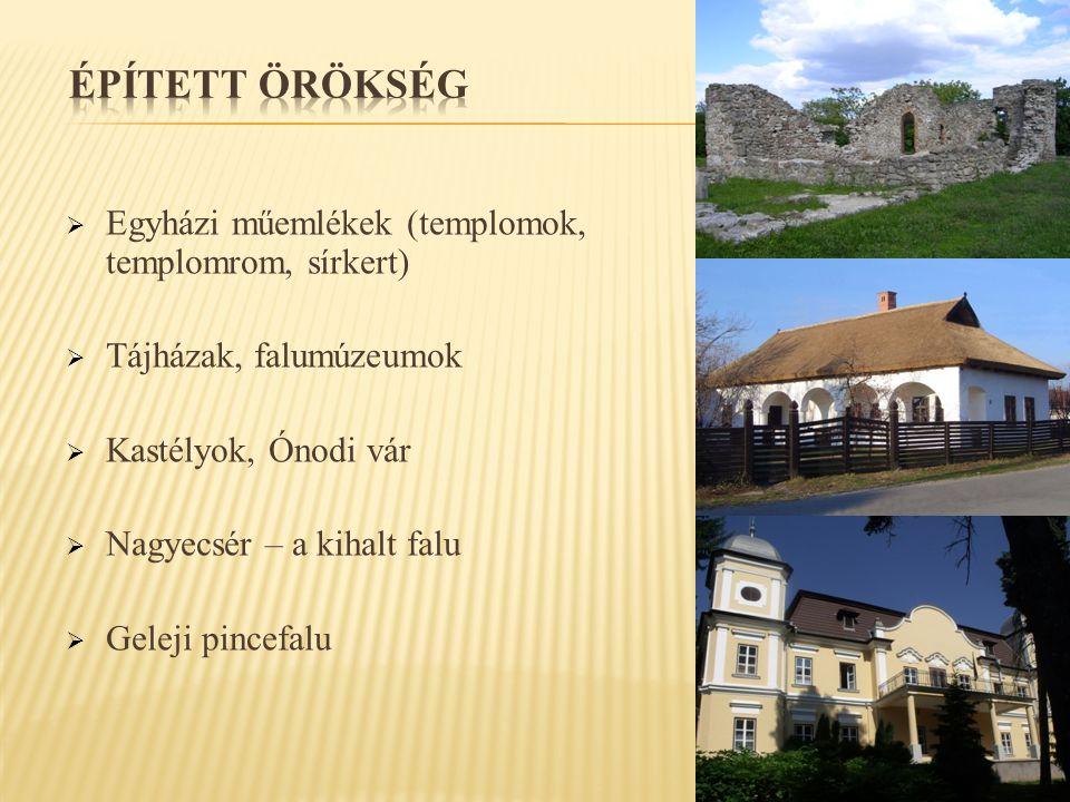  Egyházi műemlékek (templomok, templomrom, sírkert)  Tájházak, falumúzeumok  Kastélyok, Ónodi vár  Nagyecsér – a kihalt falu  Geleji pincefalu