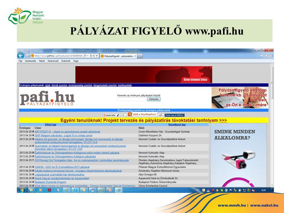 PÁLYÁZAT FIGYELŐ www.pafi.hu