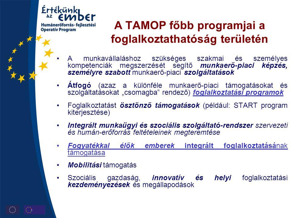 A TAMOP főbb programjai a foglalkoztathatóság területén •A munkavállaláshoz szükséges szakmai és személyes kompetenciák megszerzését segítő munkaerő-p