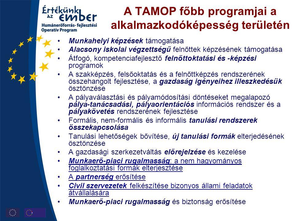 A TAMOP főbb programjai a alkalmazkodóképesség területén •Munkahelyi képzések támogatása •Alacsony iskolai végzettségű felnőttek képzésének támogatása