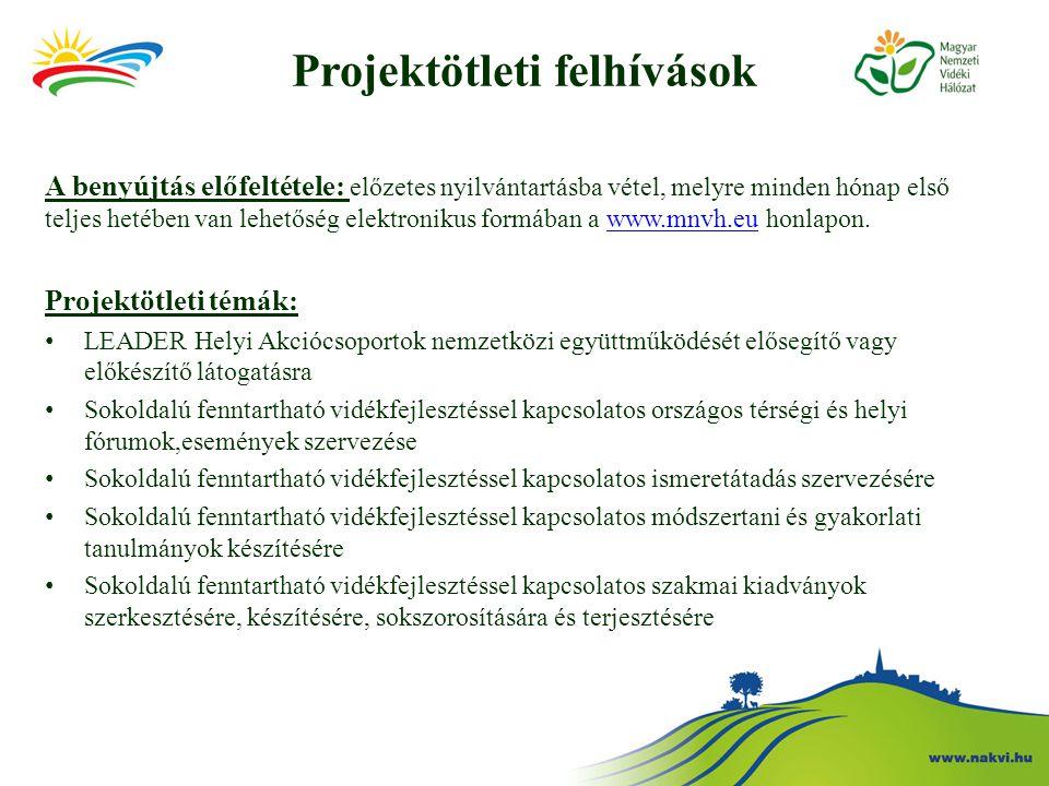 Projektötleti felhívások A benyújtás előfeltétele: előzetes nyilvántartásba vétel, melyre minden hónap első teljes hetében van lehetőség elektronikus