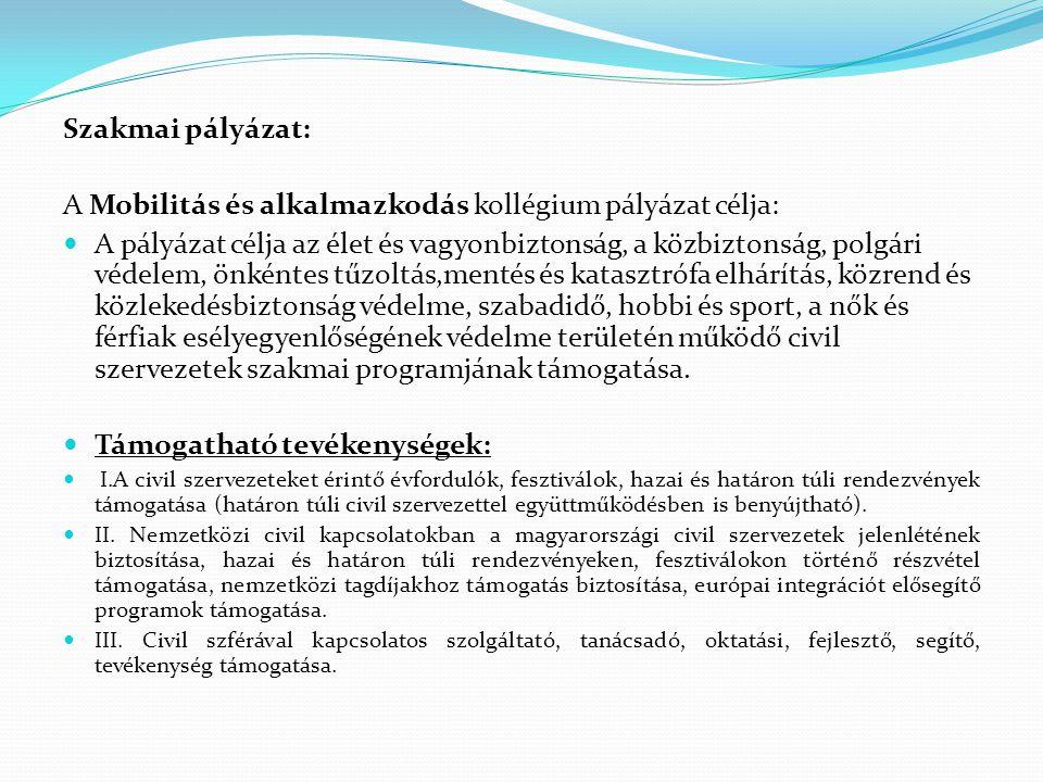 Szakmai pályázat: A Mobilitás és alkalmazkodás kollégium pályázat célja:  A pályázat célja az élet és vagyonbiztonság, a közbiztonság, polgári védele