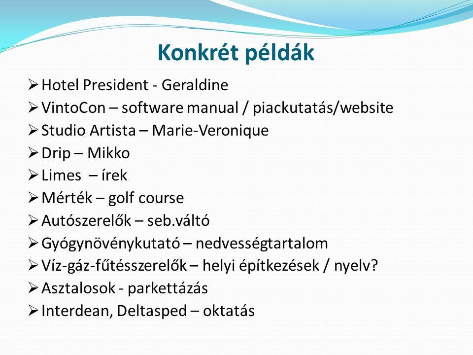 Konkrét példák  Hotel President - Geraldine  VintoCon – software manual / piackutatás/website  Studio Artista – Marie-Veronique  Drip – Mikko  Li