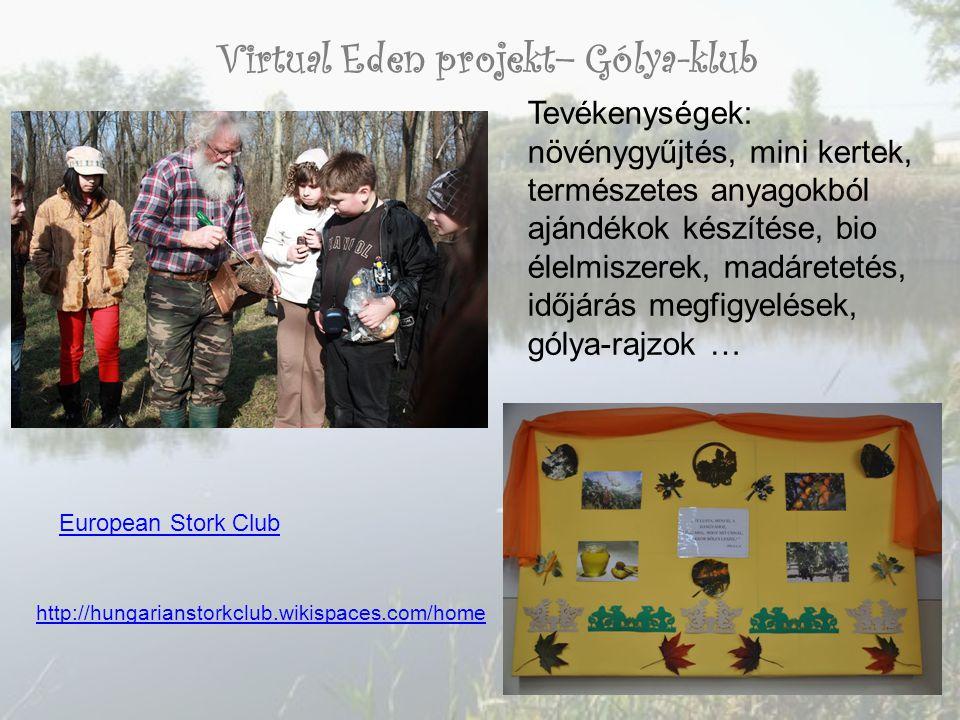 Virtual Eden projekt– Gólya-klub Tevékenységek: növénygyűjtés, mini kertek, természetes anyagokból ajándékok készítése, bio élelmiszerek, madáretetés, időjárás megfigyelések, gólya-rajzok … European Stork Club http://hungarianstorkclub.wikispaces.com/home
