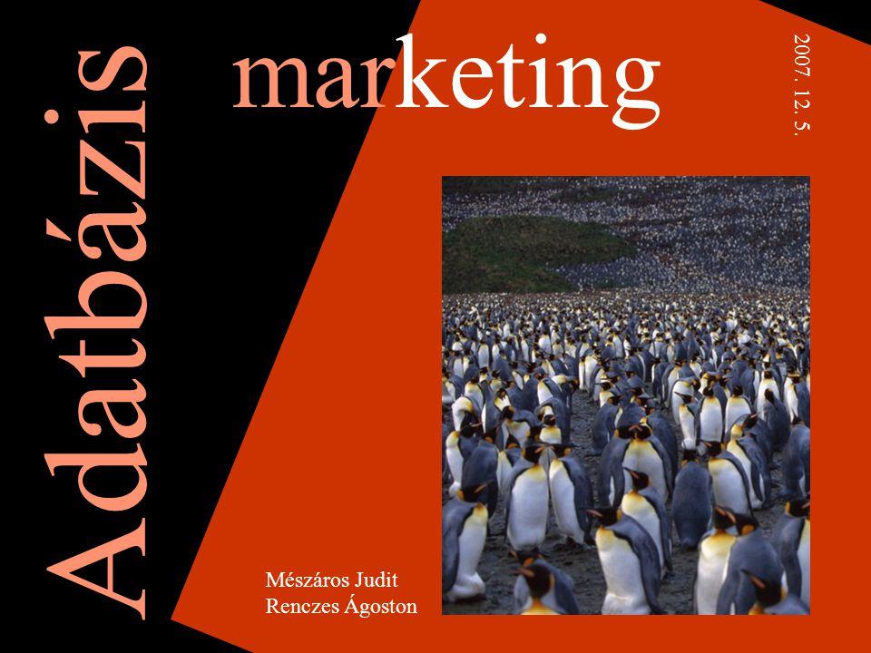 marketing Mészáros Judit Renczes Ágoston Adatbázis 2007. 12. 5.