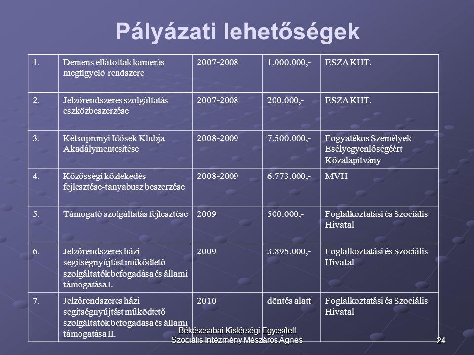 24 Békéscsabai Kistérségi Egyesített Szociális Intézmény Mészáros Ágnes Pályázati lehetőségek 1. Demens ellátottak kamerás megfigyelő rendszere 2007-2