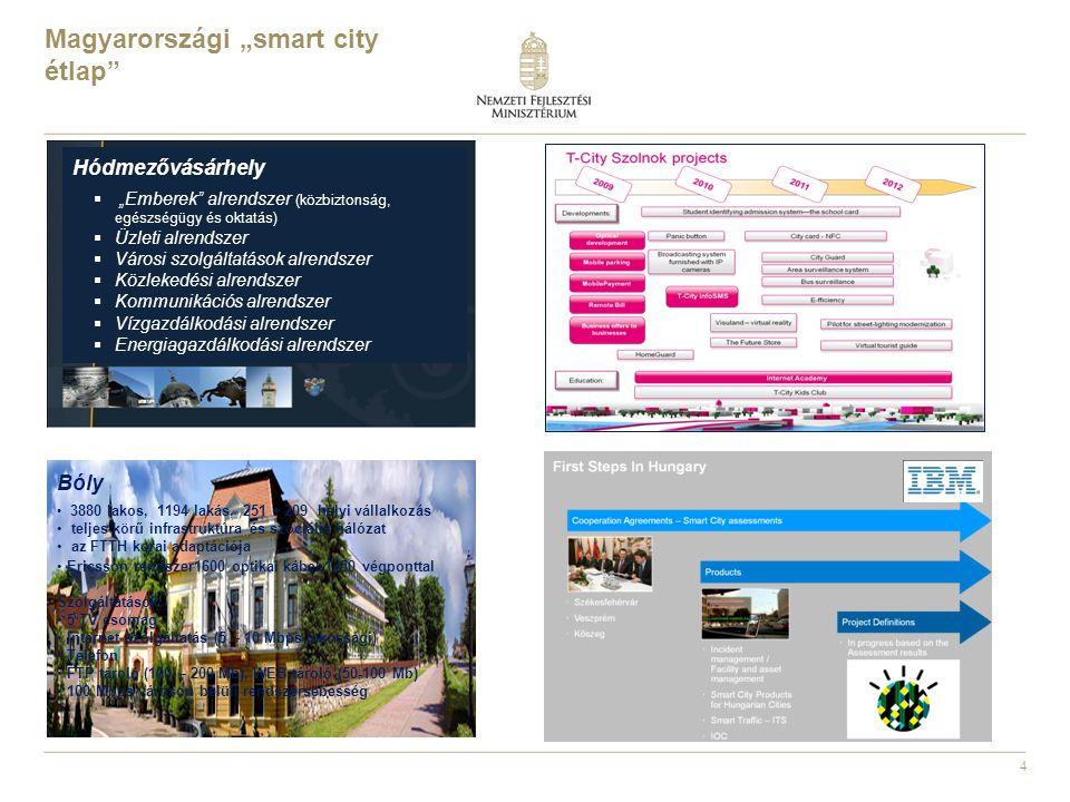 """4 Magyarországi """"smart city étlap"""" Hódmezővásárhely  """"Emberek"""" alrendszer (közbiztonság, egészségügy és oktatás)  Üzleti alrendszer  Városi szolgál"""