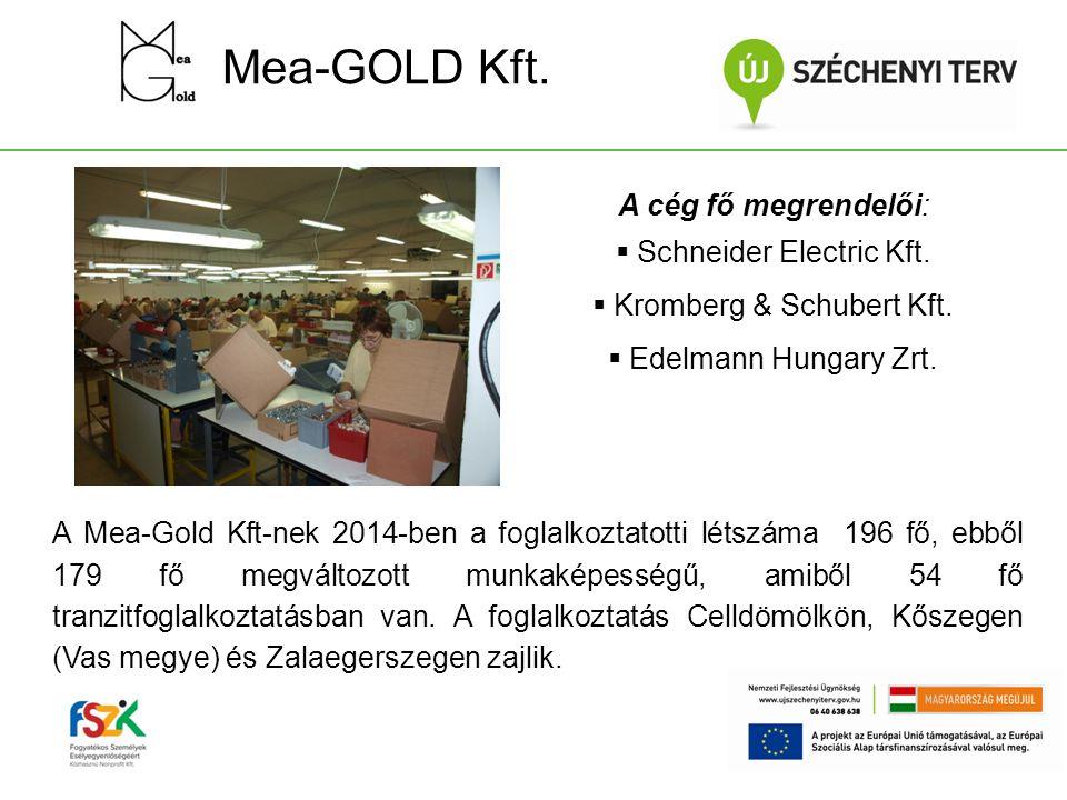 Mea-GOLD Kft. A Mea-Gold Kft-nek 2014-ben a foglalkoztatotti létszáma 196 fő, ebből 179 fő megváltozott munkaképességű, amiből 54 fő tranzitfoglalkozt