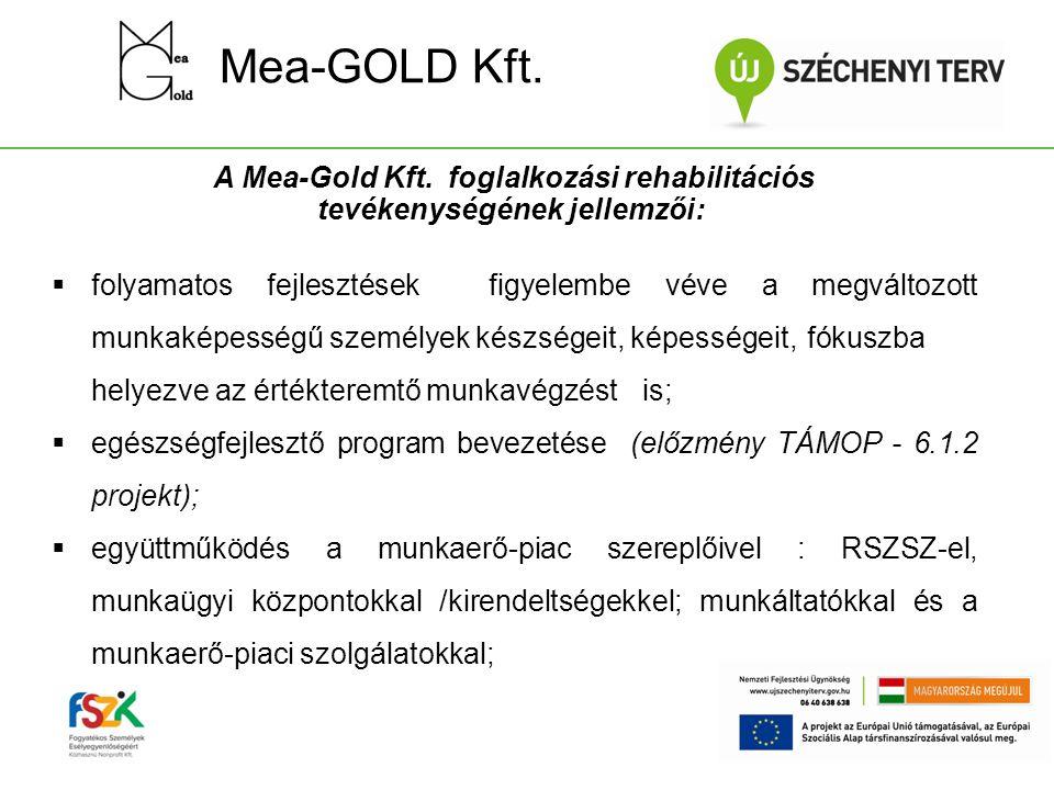 Mea-GOLD Kft. A Mea-Gold Kft. foglalkozási rehabilitációs tevékenységének jellemzői:  folyamatos fejlesztések figyelembe véve a megváltozott munkakép