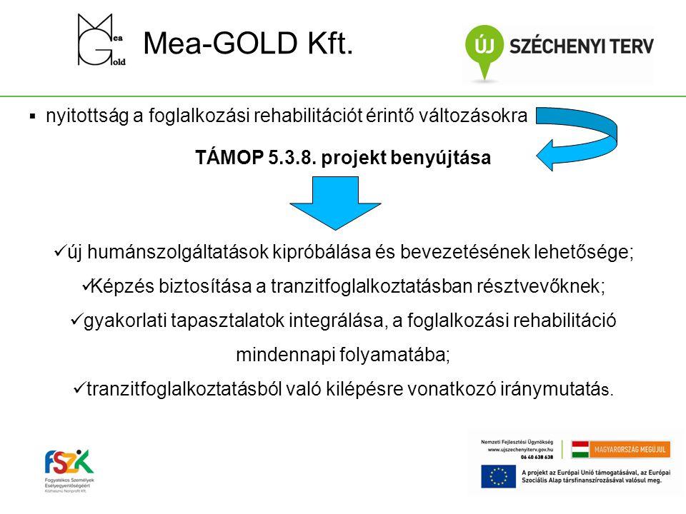 Mea-GOLD Kft.  nyitottság a foglalkozási rehabilitációt érintő változásokra TÁMOP 5.3.8. projekt benyújtása  új humánszolgáltatások kipróbálása és b
