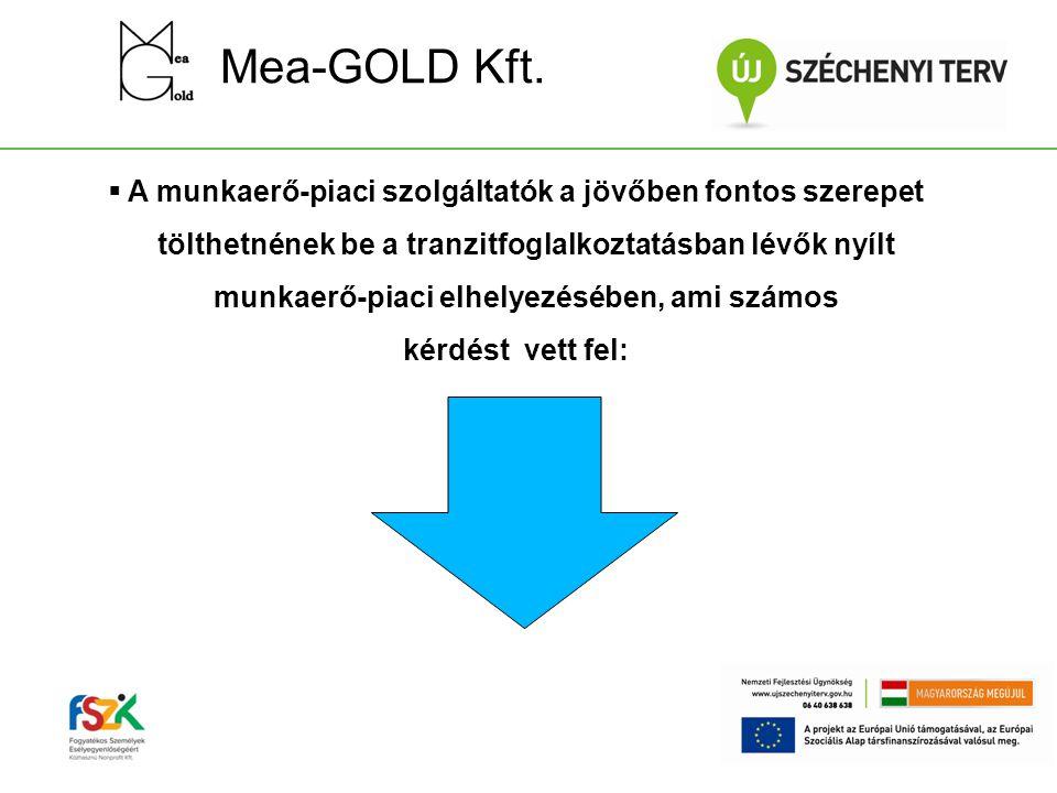 Mea-GOLD Kft.  A munkaerő-piaci szolgáltatók a jövőben fontos szerepet tölthetnének be a tranzitfoglalkoztatásban lévők nyílt munkaerő-piaci elhelyez