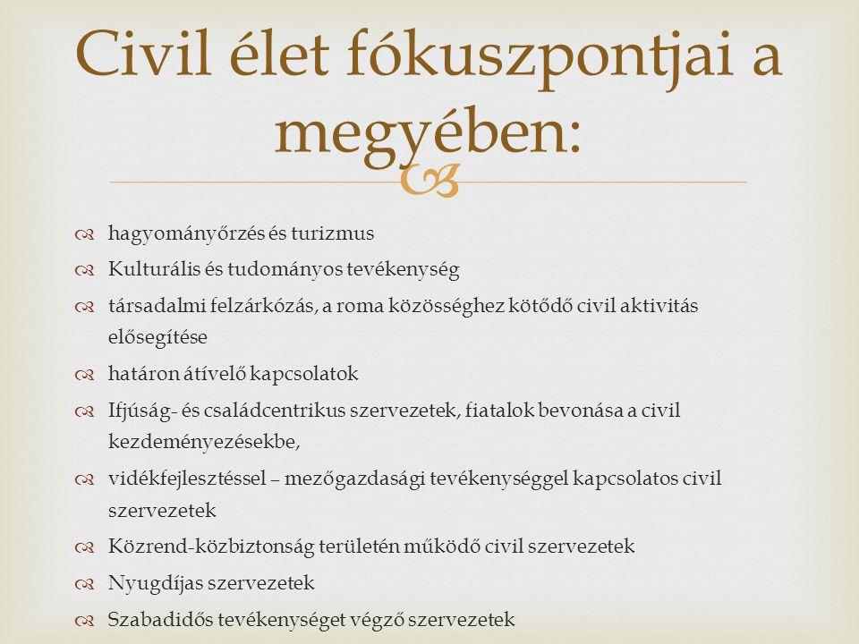   hagyományőrzés és turizmus  Kulturális és tudományos tevékenység  társadalmi felzárkózás, a roma közösséghez kötődő civil aktivitás elősegítése  határon átívelő kapcsolatok  Ifjúság- és családcentrikus szervezetek, fiatalok bevonása a civil kezdeményezésekbe,  vidékfejlesztéssel – mezőgazdasági tevékenységgel kapcsolatos civil szervezetek  Közrend-közbiztonság területén működő civil szervezetek  Nyugdíjas szervezetek  Szabadidős tevékenységet végző szervezetek Civil élet fókuszpontjai a megyében: