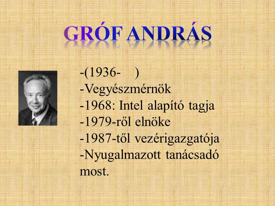 -(1936- ) -Vegyészmérnök -1968: Intel alapító tagja -1979-ről elnöke -1987-től vezérigazgatója -Nyugalmazott tanácsadó most.