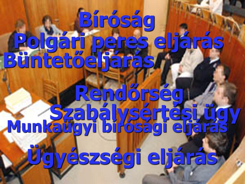 Bíróság Rendőrség Büntetőeljárás Polgári peres eljárás Szabálysértési ügy Ügyészségi eljárás Munkaügyi bírósági eljárás
