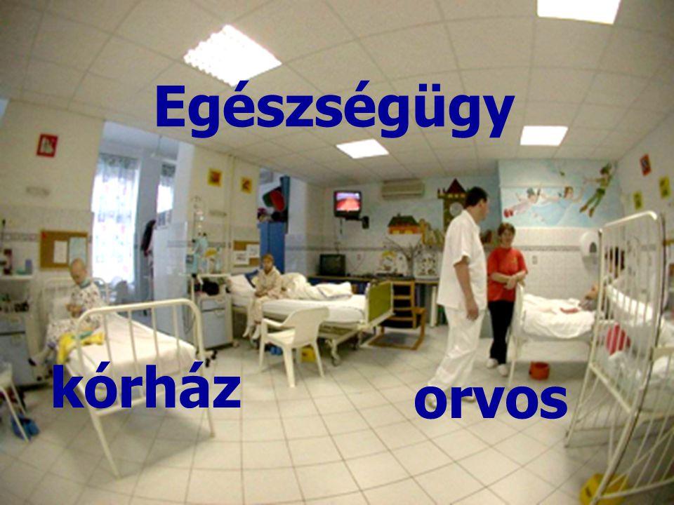 kórház orvos Egészségügy