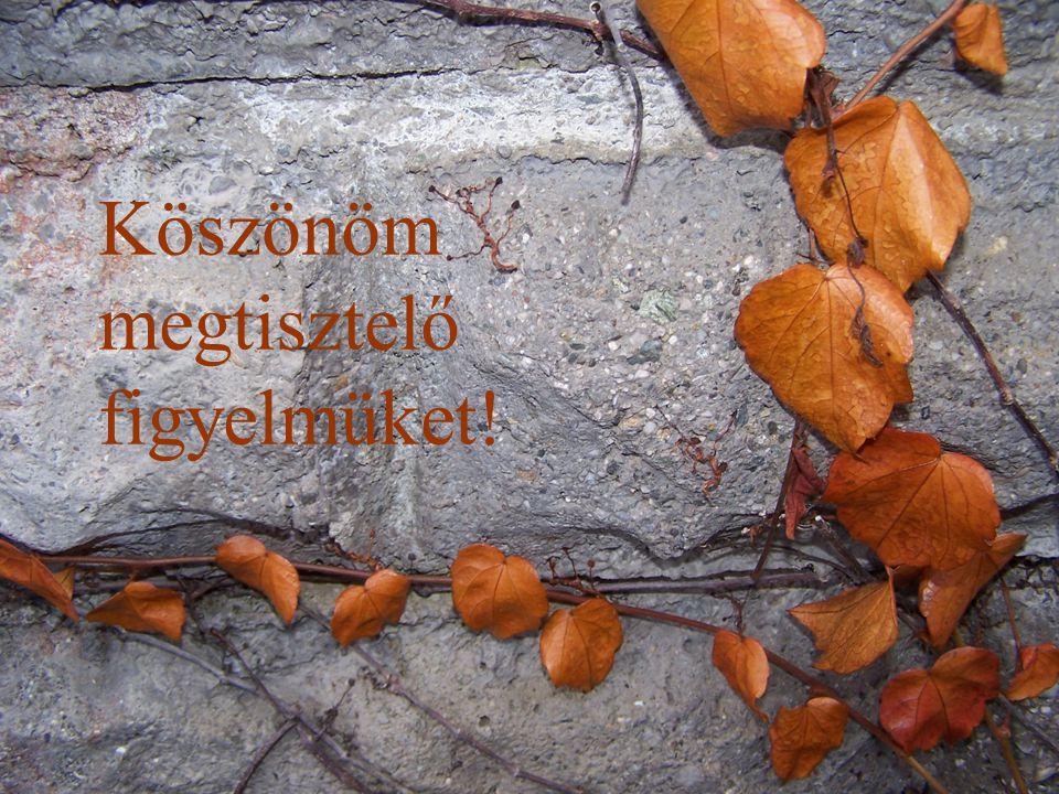 Készítette: Gerber György Csévharaszt 2009. november 04. Köszönöm megtisztelő figyelmüket!