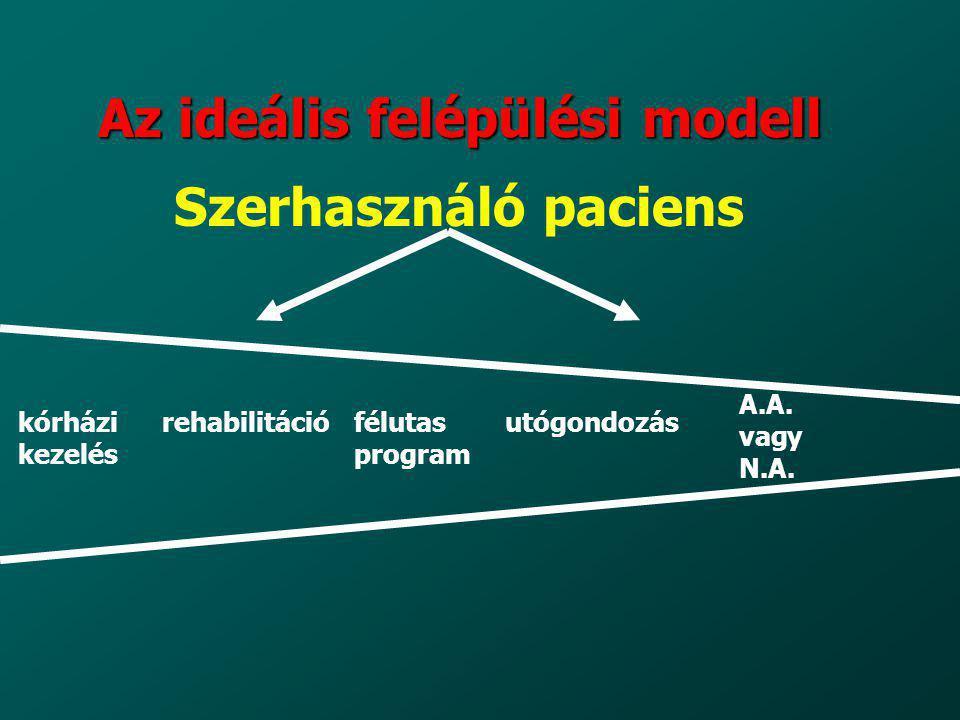 Az ideális felépülési modell Szerhasználó paciens kórházi kezelés rehabilitációfélutas program utógondozás A.A. vagy N.A.